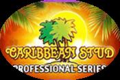 Caribbean Stud Professional Series игровой автомат